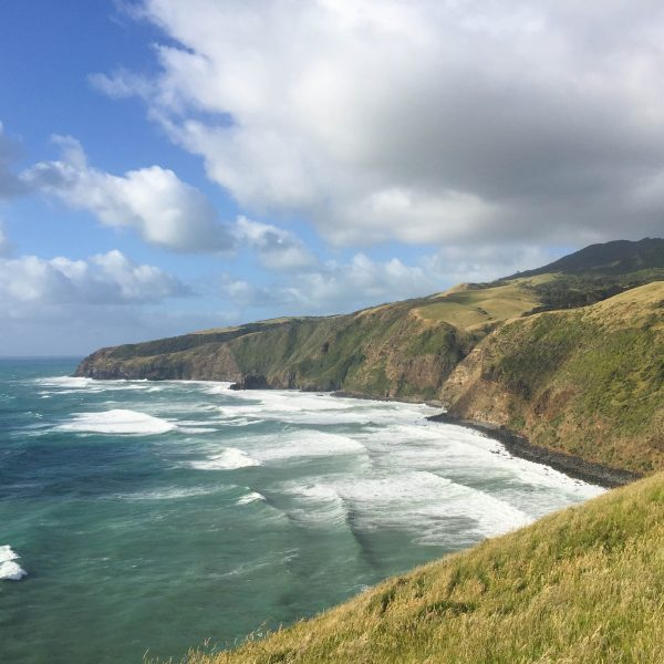 The Ultimate Getaway Guide to Raglan, New Zealand: The Best Things to See and Do!