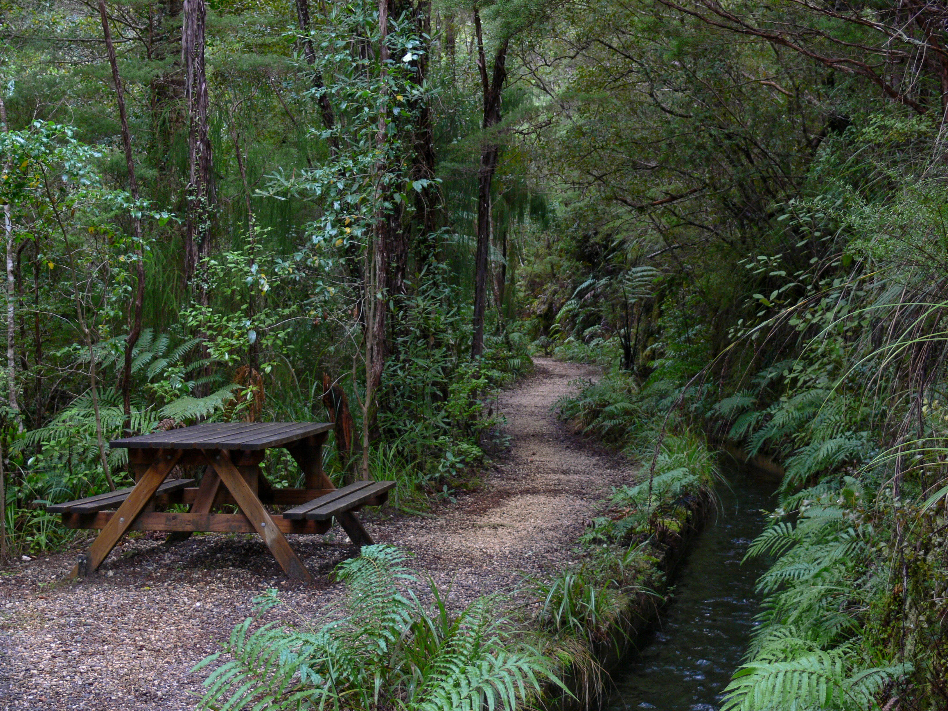 Picnic Table at Pupu Hydro Walkway