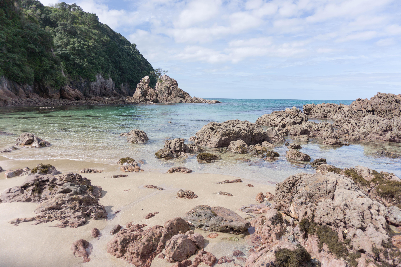 Rock Pools at Octopus Bay