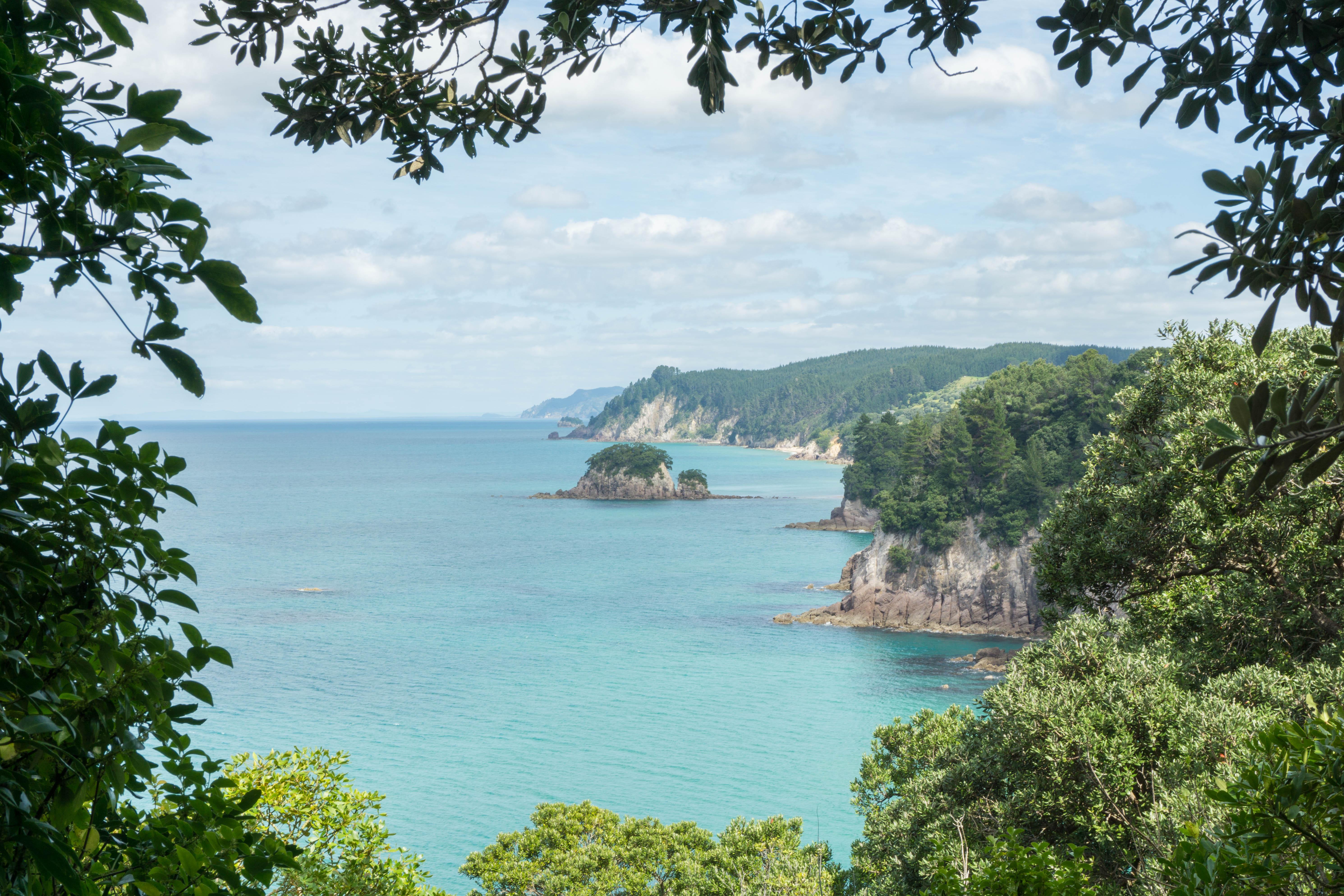 Views along walk to Octopus Bay