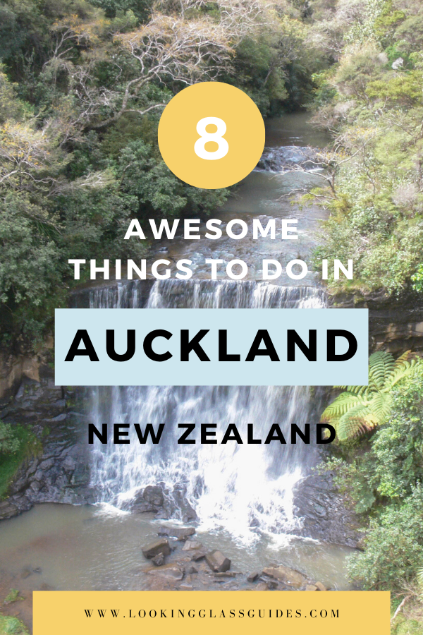 8 Awesome Things to Do in Auckland New Zealand