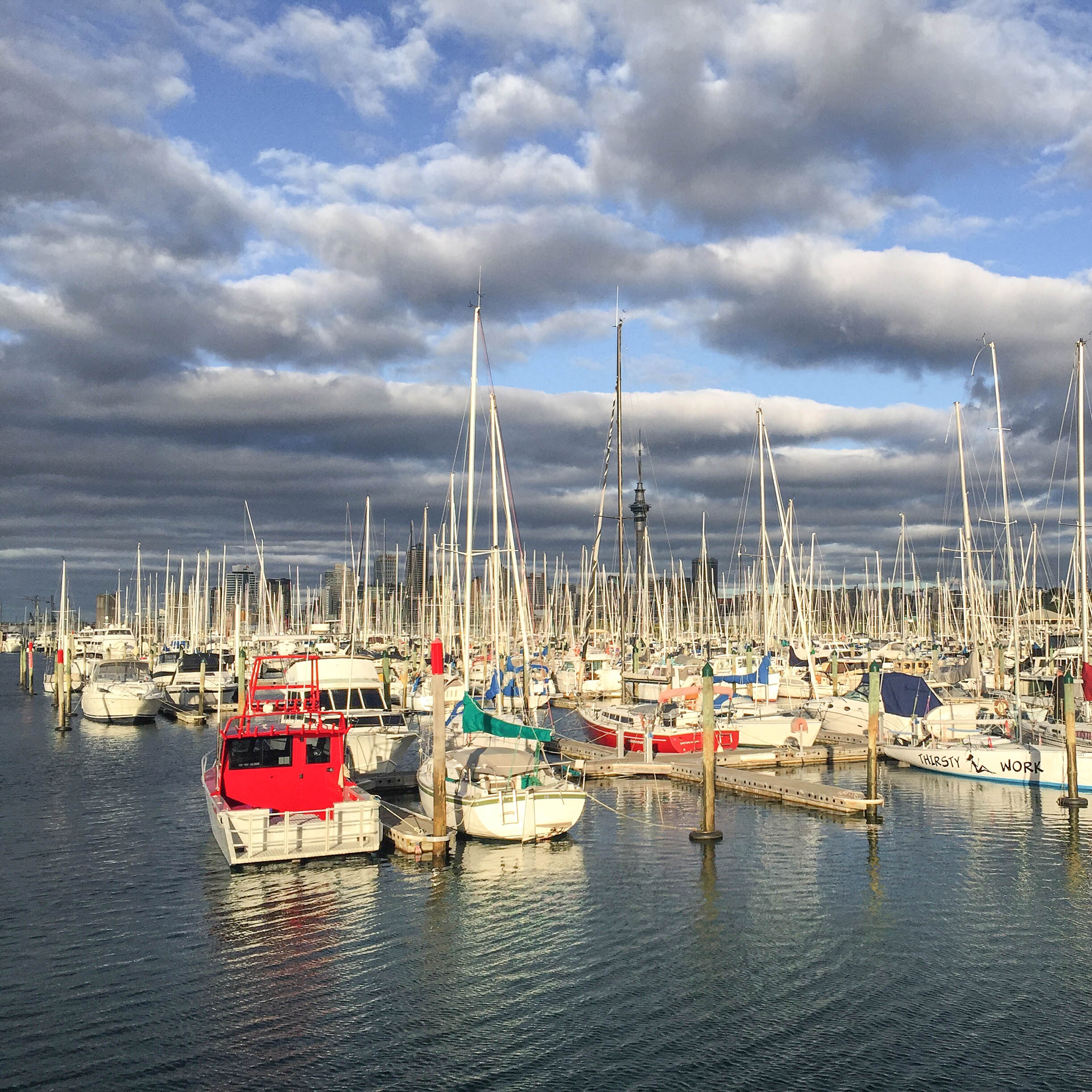 Boats in the Auckland Harbour
