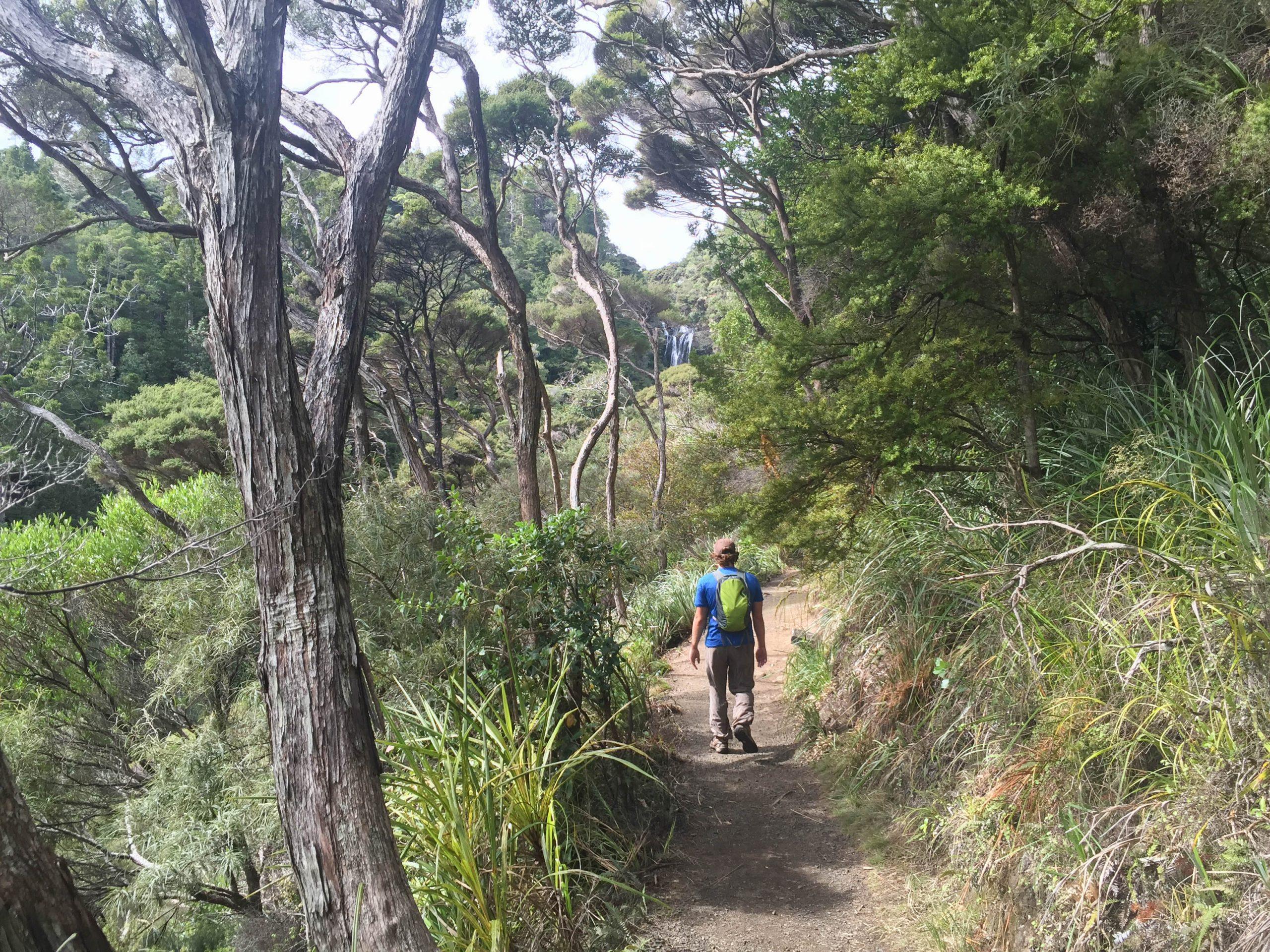 Kitekite falls track