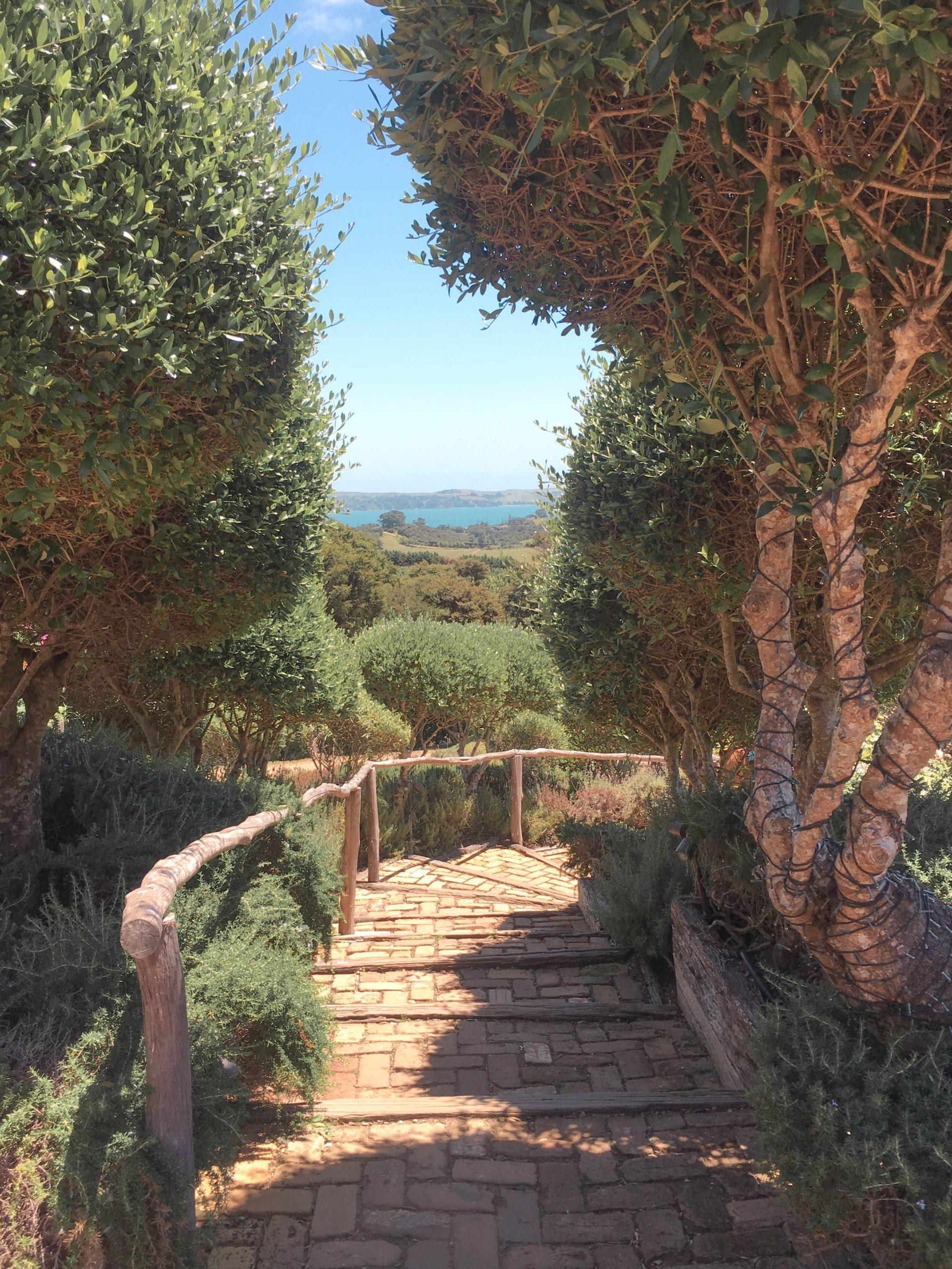 Mudbrick Waiheke views