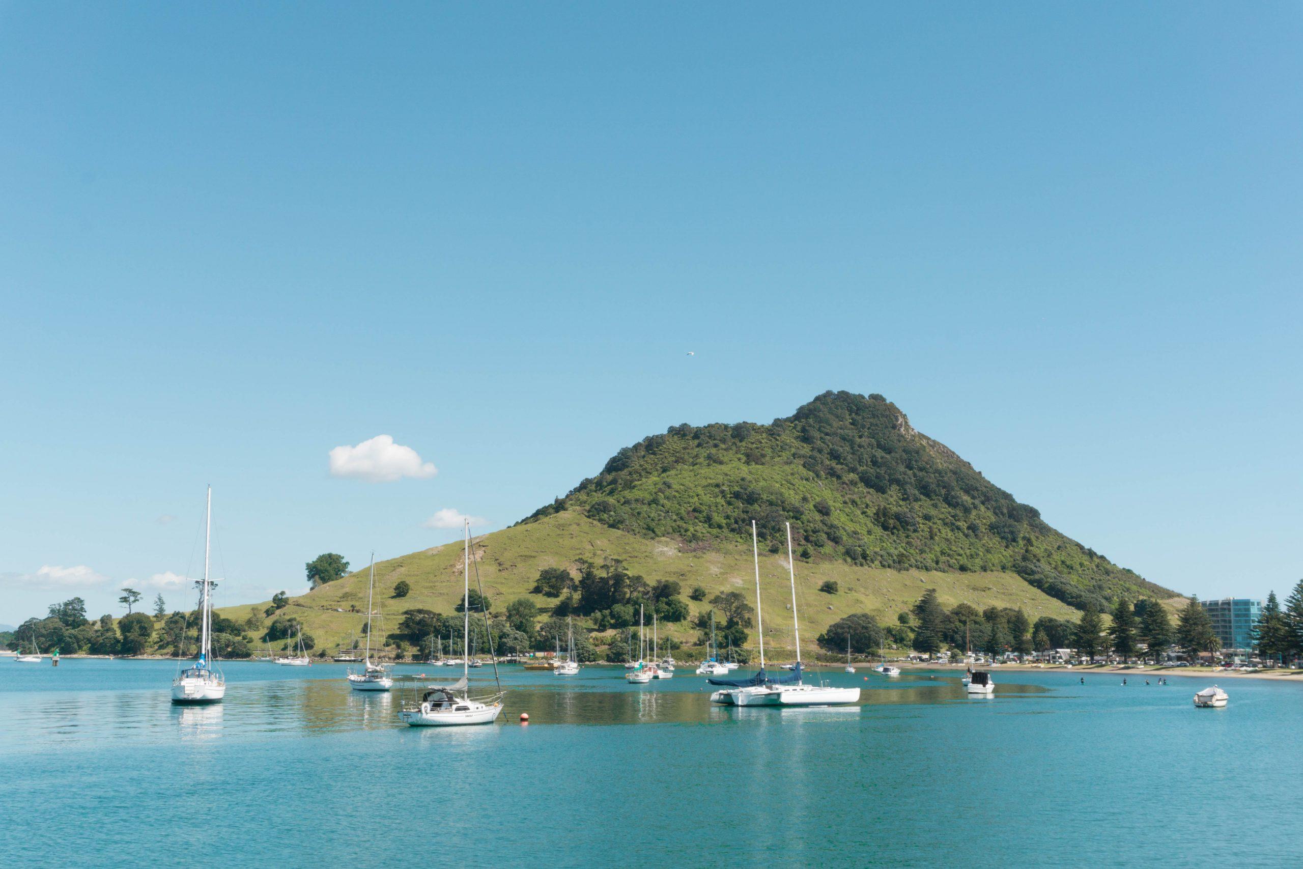 Pilot Bay boats Mount Maunganui