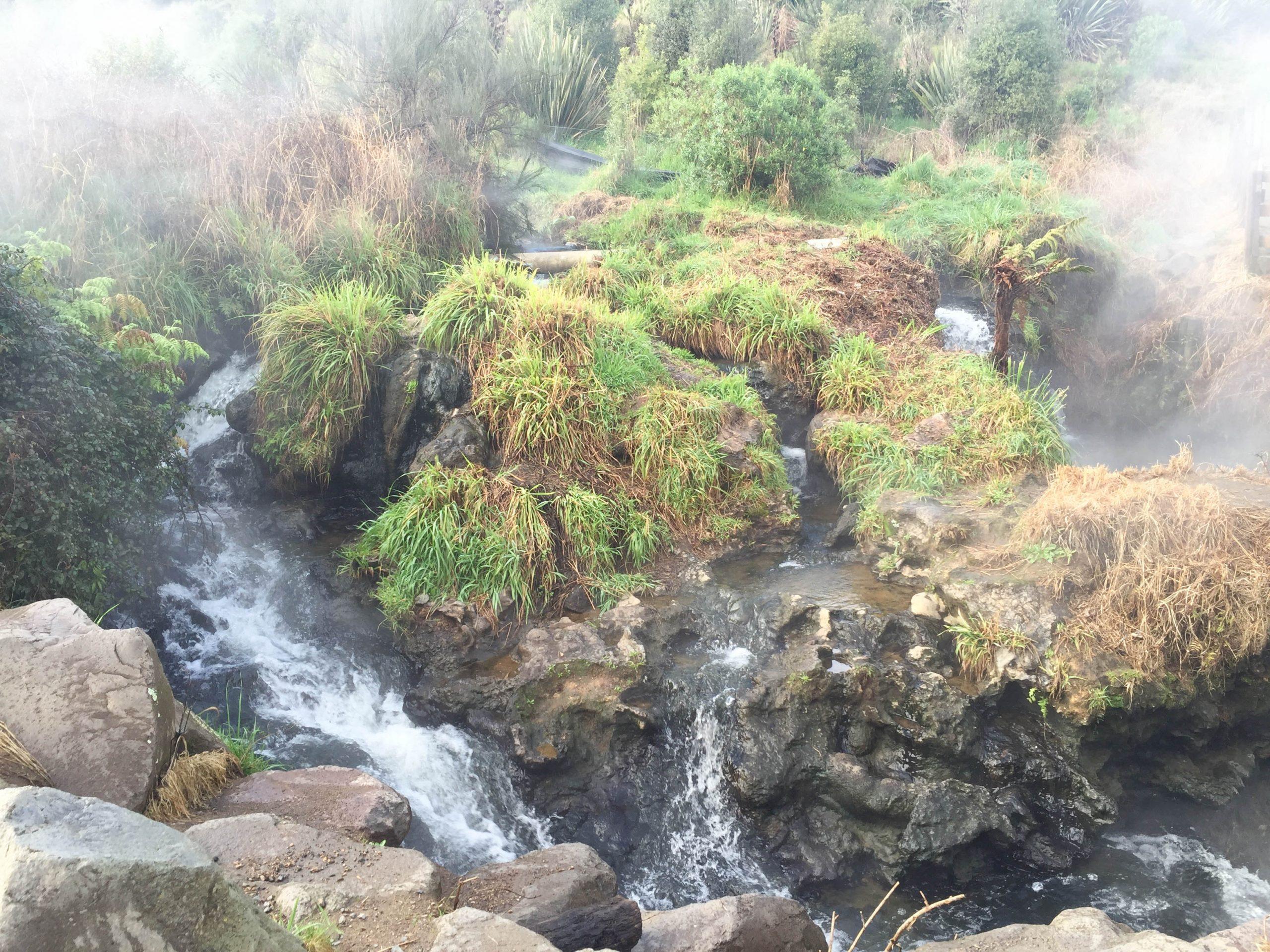 Spa Park Thermal River Taupo