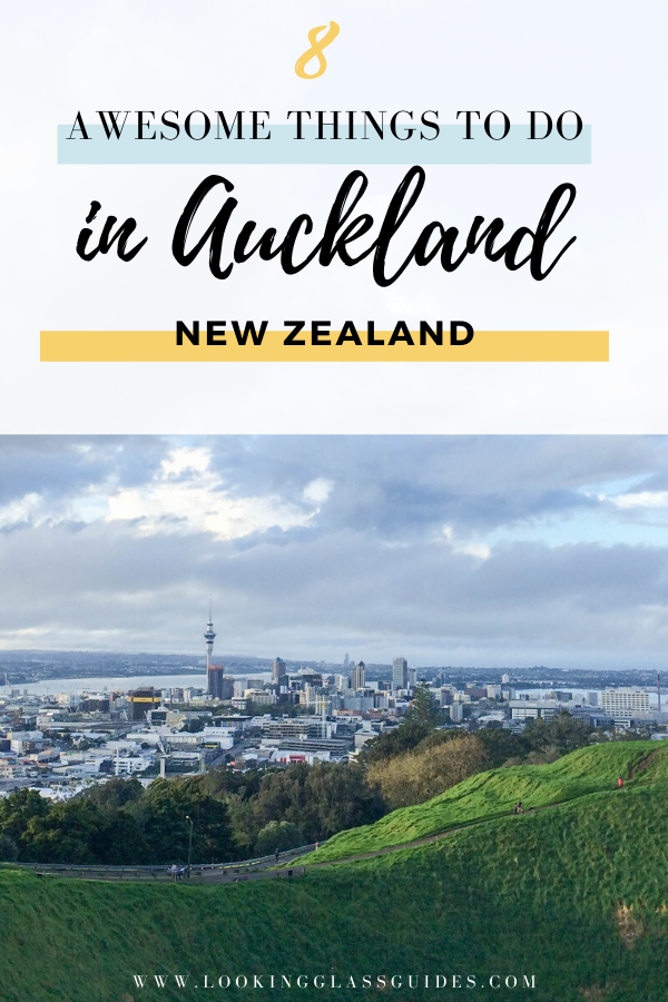 Things to Do in Auckland New Zealand