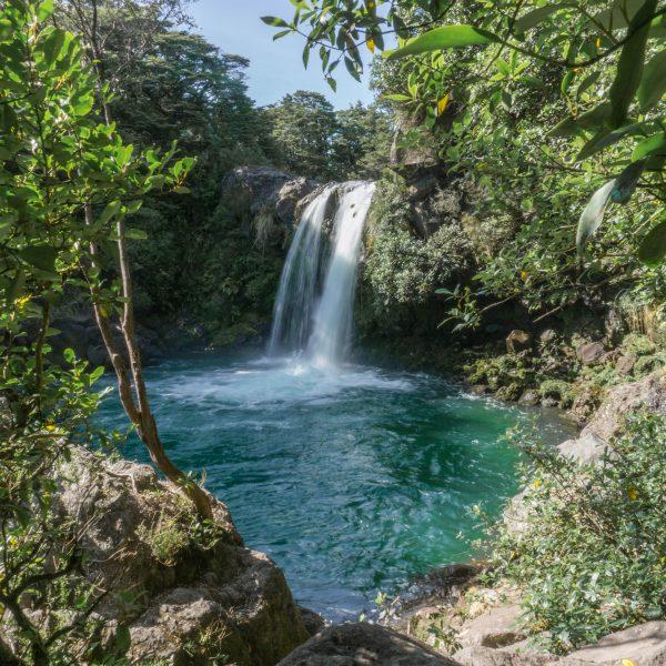 3 Beautiful Waterfall Walks in Tongariro National Park