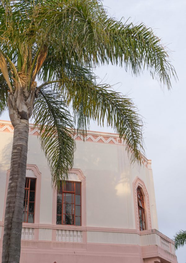 Napier pink art deco building and palm trees