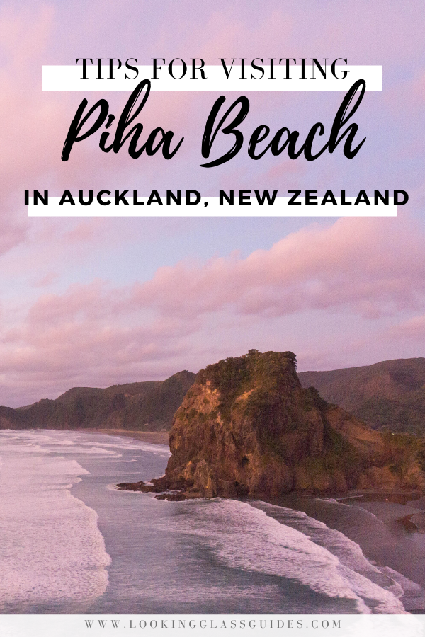 The Best Things to do in Piha Beach