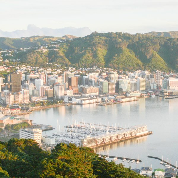 Wellington City Guide: The Best Things to See & Do in New Zealand's Capital