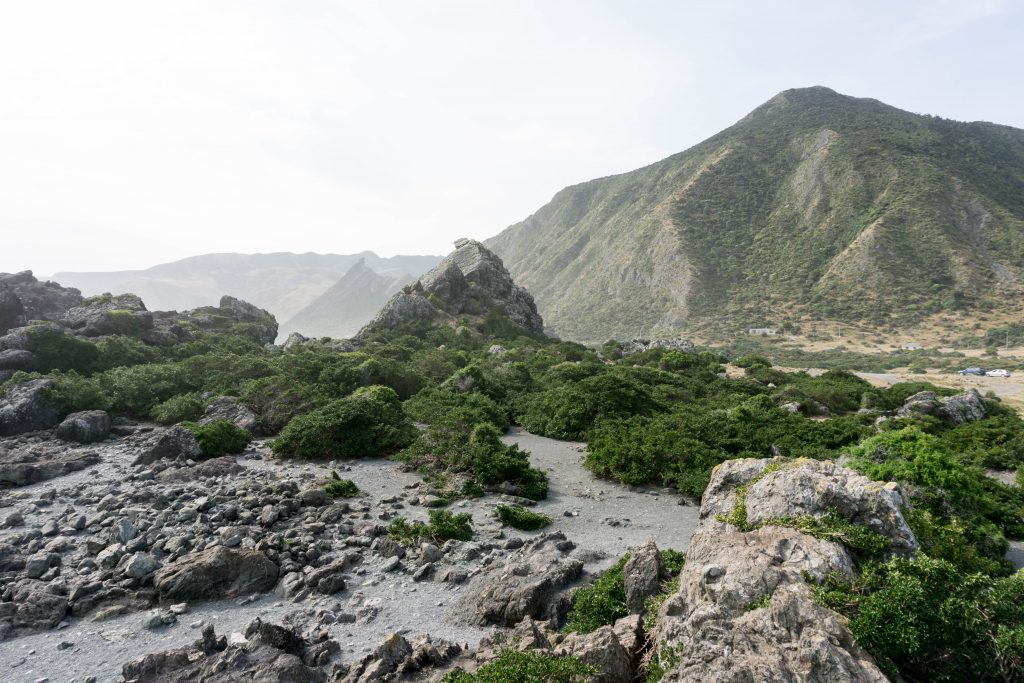 Cape-Palliser-seal-colony-rock-formations-1