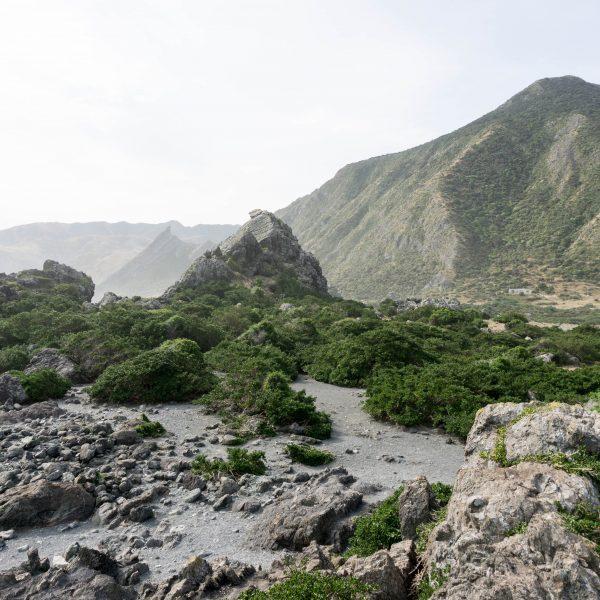 A Camping Escape to Cape Palliser & the Putangirua Pinnacles