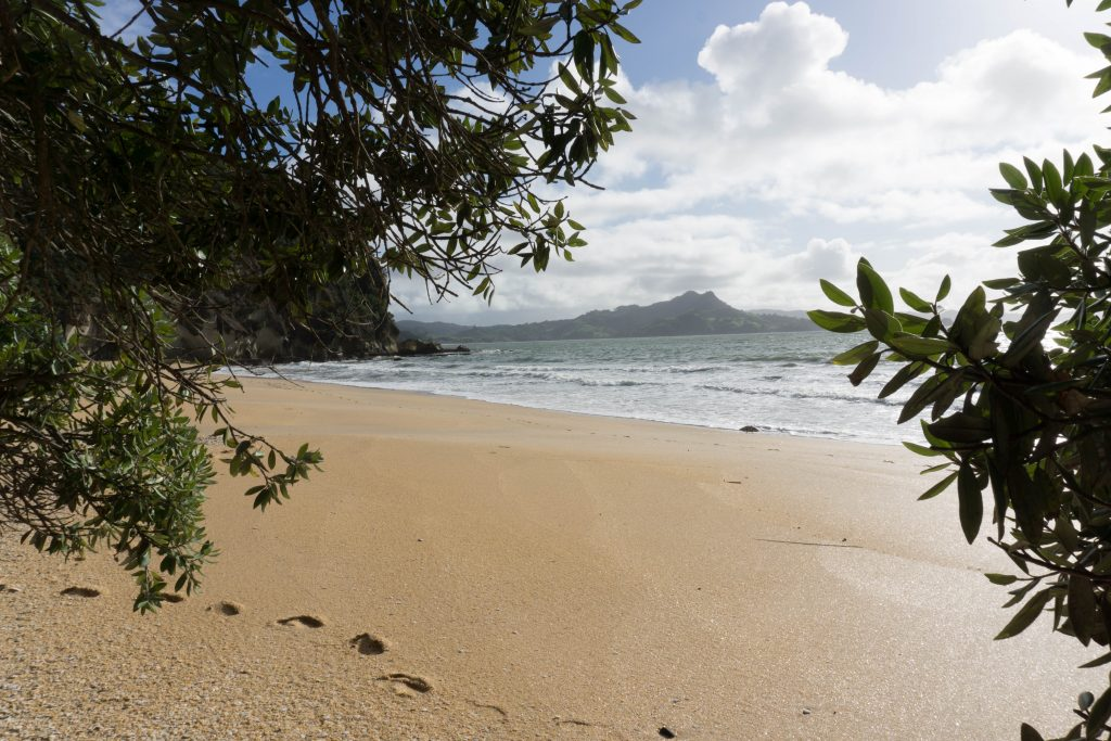 Lonely Bay Beach - Most Beautiful Beaches in the Coromandel