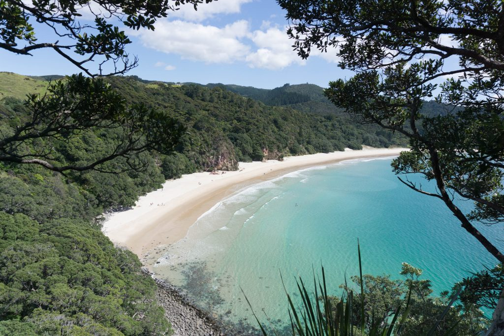 The Most Beautiful Beaches in the Coromandel