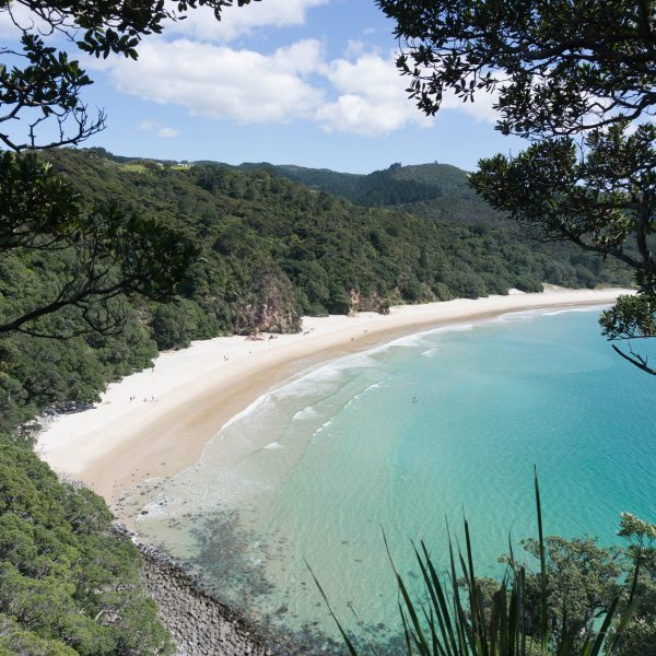 7 of the Most Beautiful Beaches in the Coromandel
