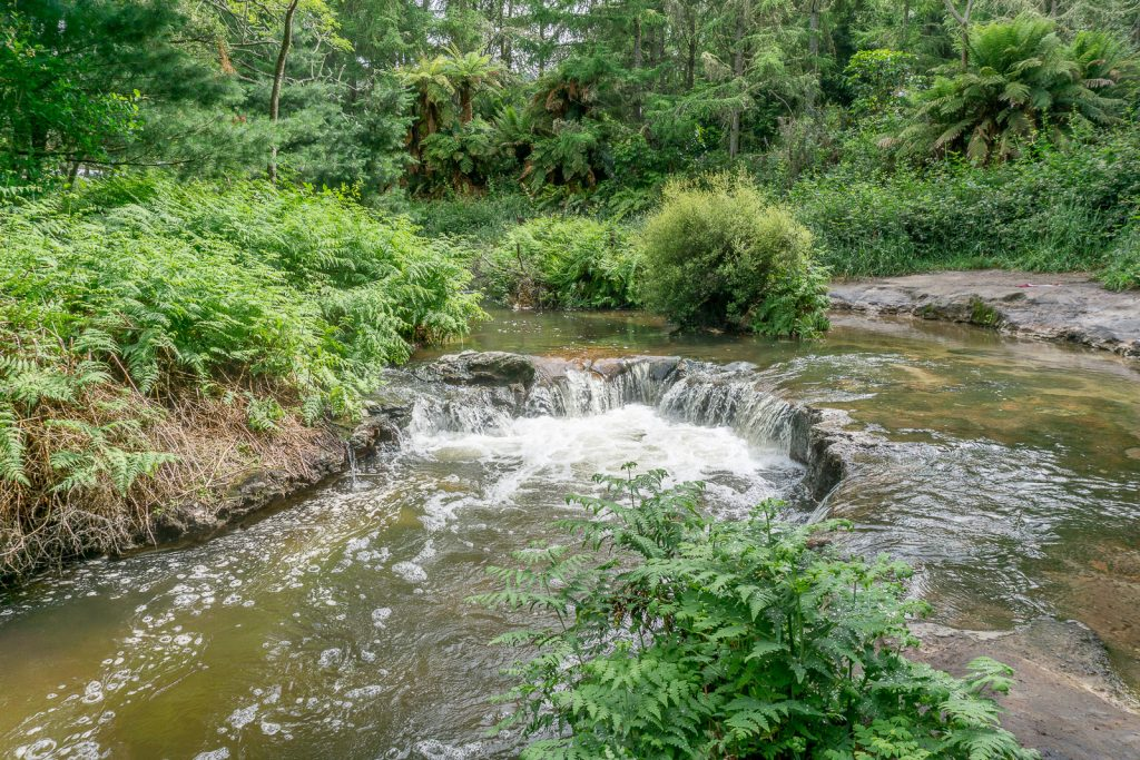 Free Things to do in Rotorua: Kerosene Creek