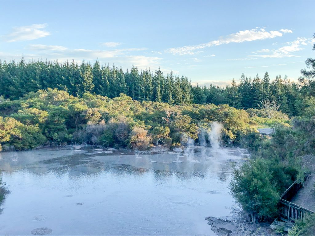 Free Things to do in Rotorua: Mud Pool near Wai-o-Tapu